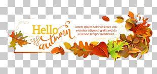Autumn Leaf European Aspen Illustration PNG