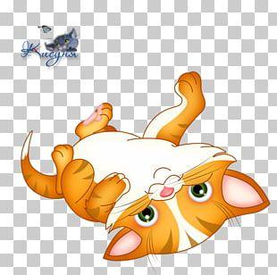 Kitten Siamese Cat Thai Cat Felidae PNG