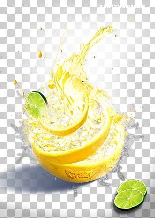 Orange Juice Lemonade Cocktail Garnish PNG