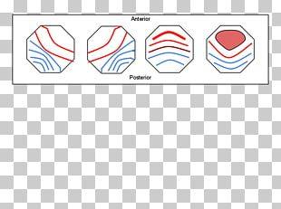 Paper Brand Line Font PNG
