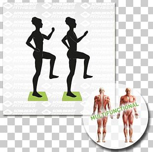 Physical Fitness Balance Board Pilates Weight Training Exercise PNG