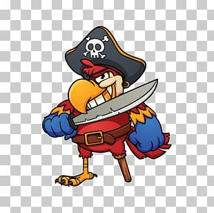 Pirate Parrot Cartoon Piracy PNG
