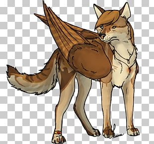 Red Fox Gray Wolf Wolf Haven International Fur Water PNG