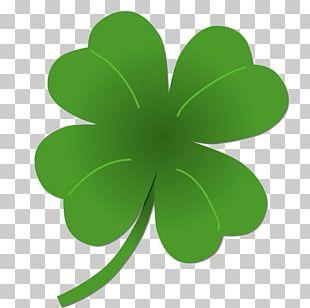 Four-leaf Clover Saint Patrick's Day St. Patricks Day PNG