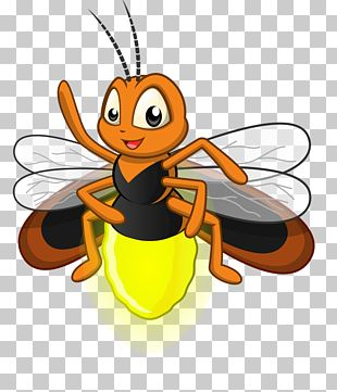 Cartoon Firefly Illustration PNG