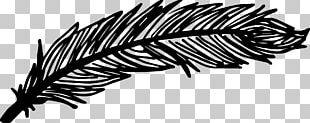 Leaf Line Art Eyelash White Font PNG