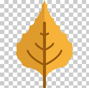 Computer Icons Autumn PNG