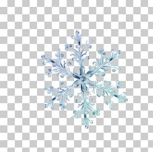 Snowflake Crystal PNG