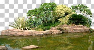 Landscape Rock Garden Computer File PNG