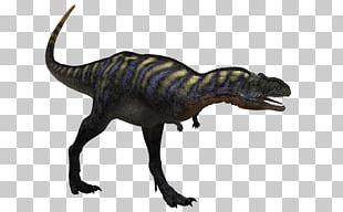 Tyrannosaurus Aucasaurus Pteranodon Velociraptor Carnotaurus PNG