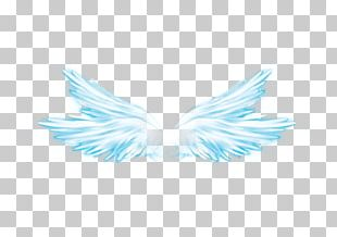 Wing Butterfly Overlay Feather PNG