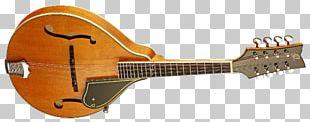 Musical Instruments String Instruments Mandolin Acoustic Guitar PNG
