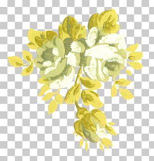 Cut Flowers Floral Design Petal Plant Stem PNG