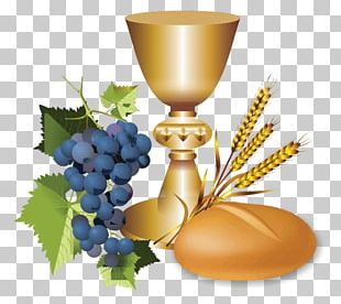 First Communion Eucharist Chalice Sacrament Portable Network Graphics PNG