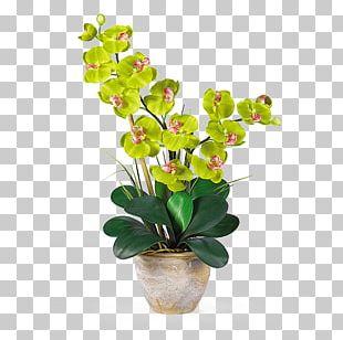Moth Orchids Artificial Flower Plant Stem PNG