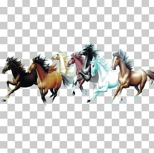 Horse Painting Interior Design Services Room Galloping PNG