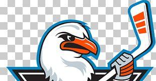 San Antonio Rampage Bull S Head Png Clipart American Hockey League