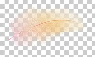 Feather Computer PNG