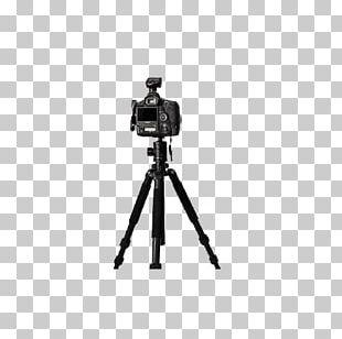 Movie Camera Tripod Photography PNG