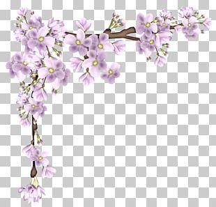 Flower Branch PNG