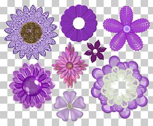Flower Violet Portable Network Graphics Floral Design PNG