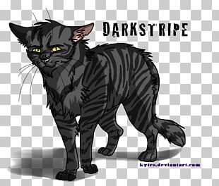 Into The Wild Darkstripe Warriors ThunderClan Rising Storm PNG