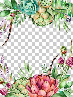Succulent Plant Flower Watercolor Painting Cactaceae Branch PNG