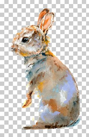 Lionhead Rabbit Domestic Rabbit Bugs Bunny Watercolor Painting PNG