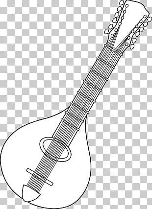 String Instruments Musical Instruments Mandolin PNG