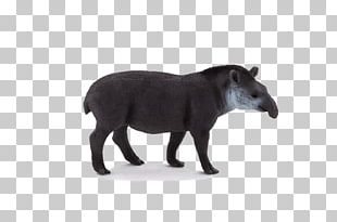 South American Tapir Amazon.com Malayan Tapir Toy Baird's Tapir PNG