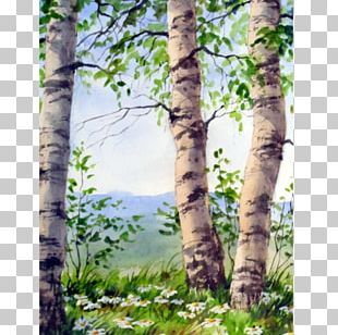 Birch The Starry Night Watercolor Painting Oil Paint PNG