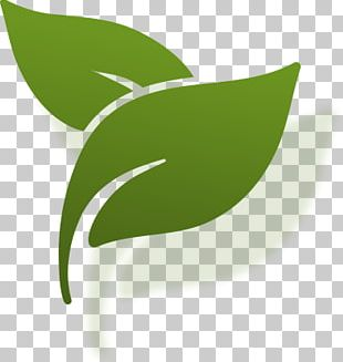 Drawing Computer Icons Painting Leaf PNG