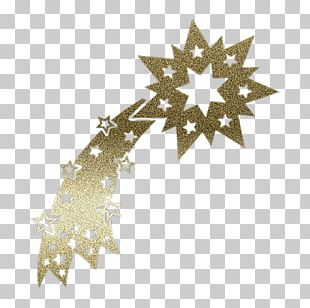 Christmas Ornament Leaf Line Star PNG
