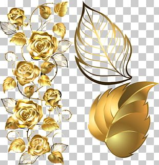 Beach Rose Golden Rose Flower PNG
