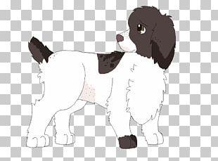 English Springer Spaniel Puppy Dog Breed Welsh Springer Spaniel PNG