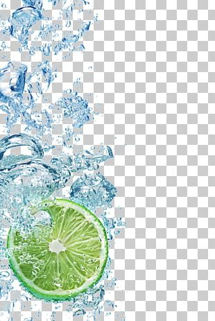 Juice Lemon-lime Drink Soft Drink Tea PNG