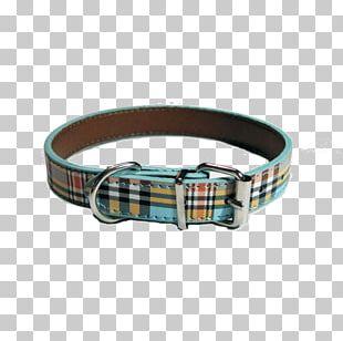 Dog Collar Leash Dog Harness PNG