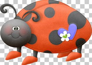 Ladybird Beetle Insect Butterfly PNG