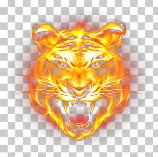 Tiger Fire Flame PNG