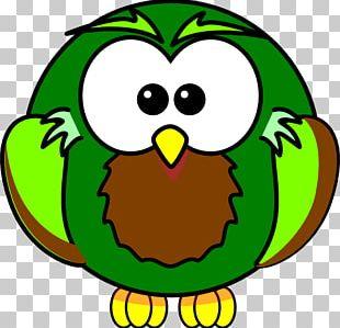 Owl Drawing Bird PNG