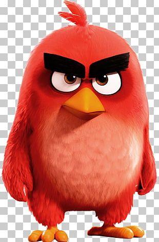 Angry Birds Epic Angry Birds 2 Angry Birds Go! Angry Birds Evolution PNG