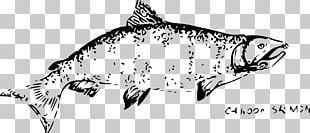 Drawing Chinook Salmon Pink Salmon Chum Salmon Black And White PNG