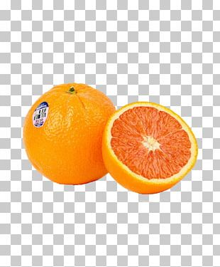 Blood Orange Tangerine Clementine Tangelo PNG