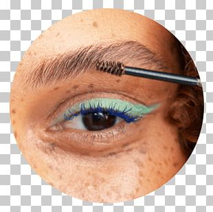 Eyebrow Eyelash Extensions Eye Shadow PNG