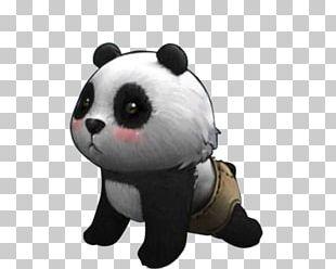 Giant Panda Periorbital Dark Circles Raccoon Eyes PNG