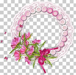 Portable Network Graphics Circle Beach Rose PNG
