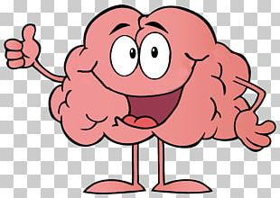 Cartoon Brain PNG