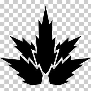 Maple Leaf Plant Nature Computer Icons PNG