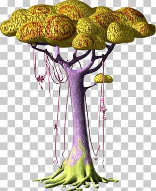 Birthday The Blossom Tree Television Show Drawing PNG