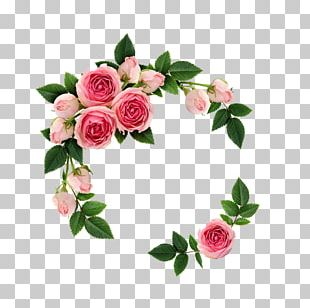 Stock Photography Flower Bouquet Rose Bud PNG